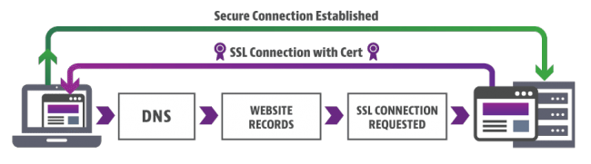 How SSL Certificate Works?